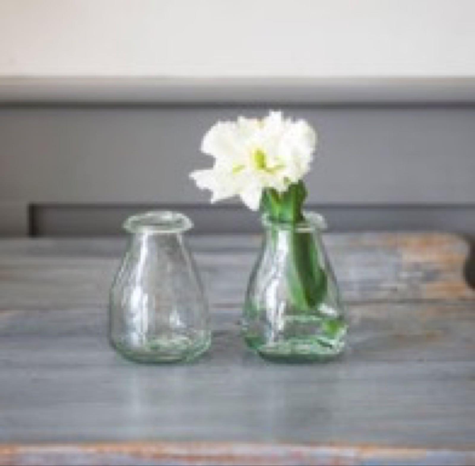 Set of 2 buds vases