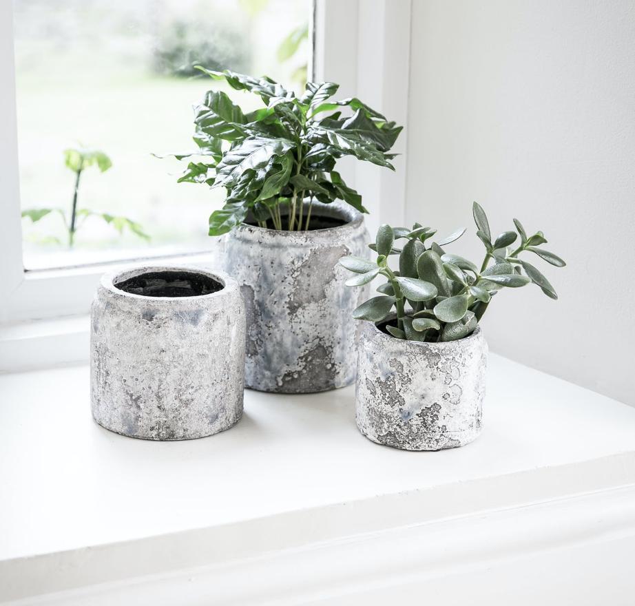 Withington Glazed Finish Pots